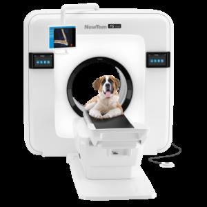 Veterinary Cone Beam CT